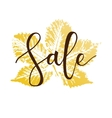 Sale hand written inscription vector image vector image