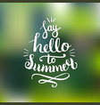 say hello to summer vector image vector image