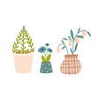 set plants in pots print vector image