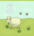 alphabet letter s and sheep abc book vector image vector image