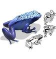 Blue Poison Dart Frog Set vector image vector image