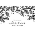 christmas holly design greeting card or vector image vector image