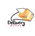 delivery online flying box background image vector image