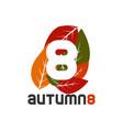 graphic elegant leaf autumn season symbol vector image