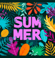 greeting summer 2019 card on tropical leaves vector image vector image