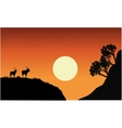 Silhouette of antelope with sun vector image