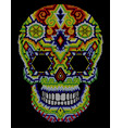 skull huichol aztec vector image