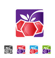 berry with leaf in square shape app vector image vector image