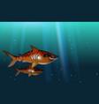 blue background tiger sharks wild predator toothy vector image vector image