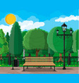 city park concept vector image