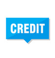 credit price tag vector image vector image