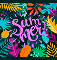 greeting summer 2019 lettering on tropical leaves vector image vector image