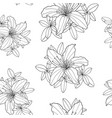 outline seamless pattern with rhododendron flower vector image