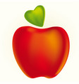red apple whit a heart leaf vector image