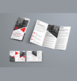 tri-fold brochure template in modern style with vector image vector image
