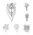 a bouquet of fresh flowers outline icons in set vector image
