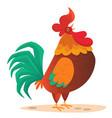 fat cartoon rooster vector image vector image