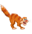 frightenedcat vector image vector image