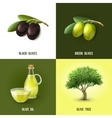 Olive Design Concept vector image vector image