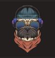 pug dog headphone vector image vector image