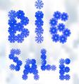 words big sale vector image