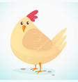 cartoon big fat hen isolated on a white vector image vector image