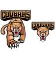 cougar mascot vector image vector image