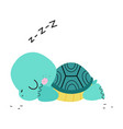 cute turtle with shell and short feet sleeping vector image