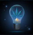 glass transparent cannabis leaf in light bulb vector image