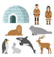 polar arctic animals and residents of the north vector image