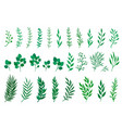 set green tree branches with leaves vector image vector image