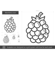 Blackberry line icon vector image vector image