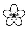 cherry blossom flower or sakura festival line icon vector image vector image
