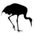 stork black silhouette vector image