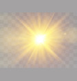 sunlight light effects vector image vector image