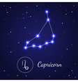 Capricorn Zodiac Sign Stars on the Cosmic Sky vector image