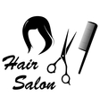 hair care icon with woman head vector image vector image