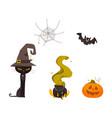 halloween pumpkin cat witch hat web cauldron