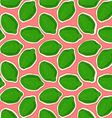 pattern of lime vector image vector image