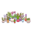 Plants in pots vector image vector image