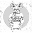 retro hipster fashion animal ram or mouflon vector image
