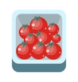Tomatoes in Tray Flat Design vector image vector image