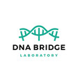 dna bridge strain helix genetic laboratory logo vector image