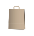 Empty Carrier brown bag on white vector image