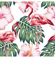 flamingo green leaves pink hibiscus white vector image vector image