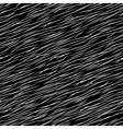 fur vector image vector image