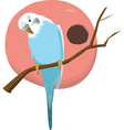 bird vector image