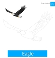 Eagle bird learn to draw vector image vector image