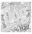 how to help dogs that are hypoallergic Word Cloud vector image vector image