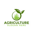 leaf and grass agriculture logo icon design vector image